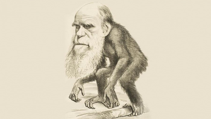 Charles Darwin A fajok eredete CoolTour
