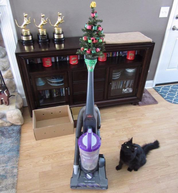 karácsony kutya macska házikedvenc