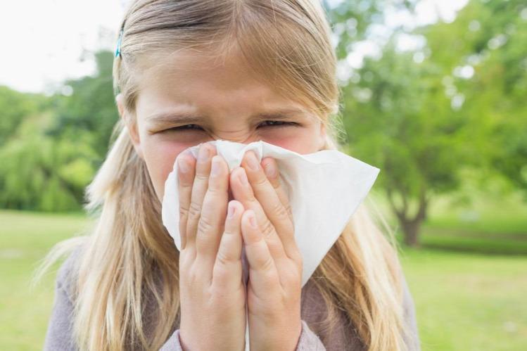 Tünde allergia rovarcsípés allergia darázscsípés