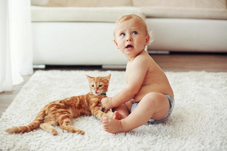 Tünde allergia interjú orvos macska kiemelt