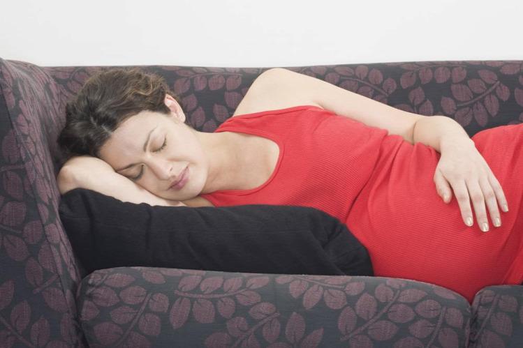 Krikett terhesség kismama második trimeszter terhesnapló