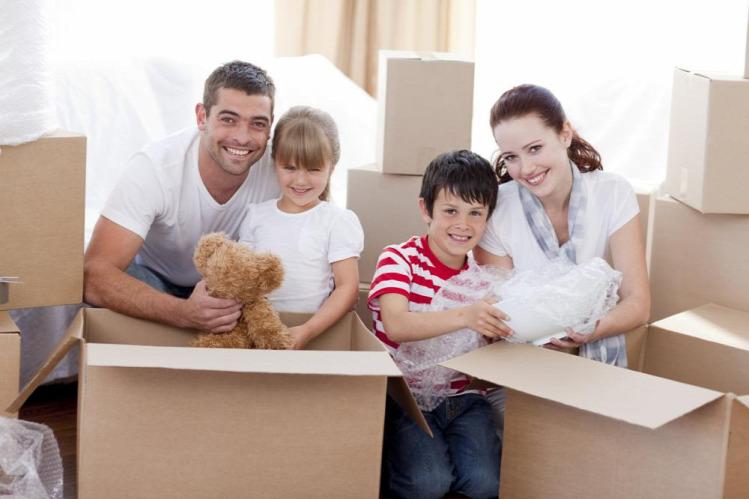 Lilacsiga család költözés életmód