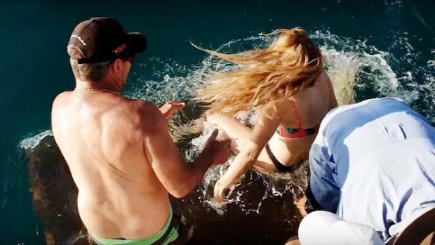 cápa etetés baleset