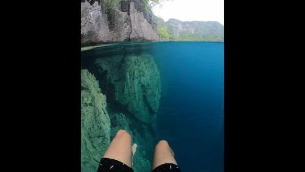 víz tiszta tó barracuda Fülöp-szigetek