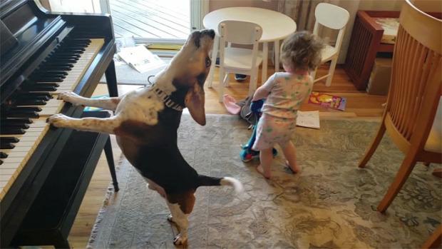 baba kutya tánc tene zongora