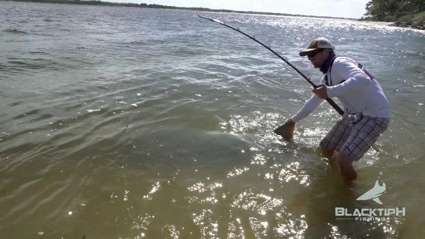 tenger horgász pecázás fűrészhal