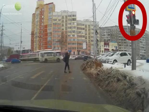 Oroszország közlekedési lámpa zebra kutya nő