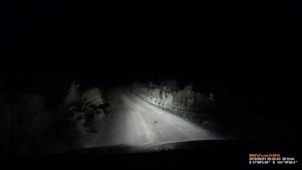 baleset  kenguru ugrás rúgás éjszaka autó