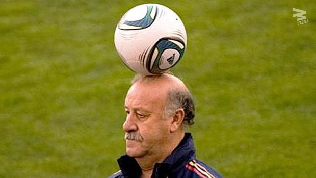 foci futball edző
