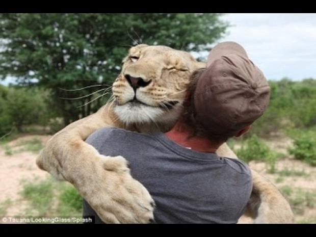 barátság állat ragaszkodás