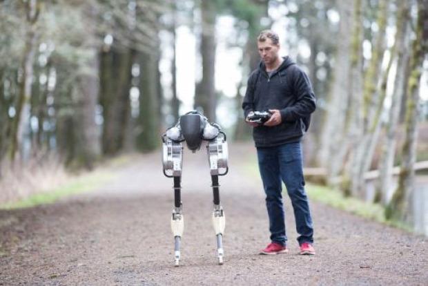 robot láb madár cassie strucc